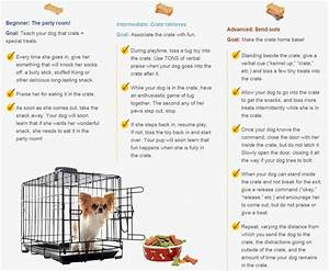 Best 25 crate training ideas on pinterest puppy crate for Job lot dog crate