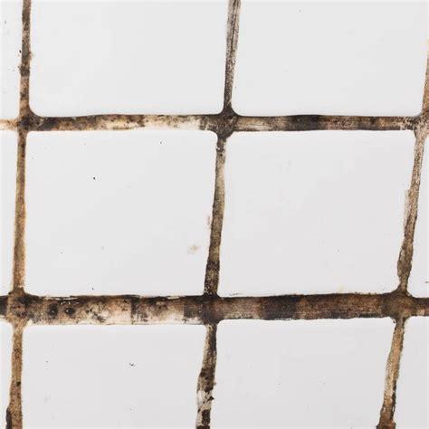 Badezimmer Fliesen Reinigen by Fliesen Reinigen Die Besten Hausmittel Und Tipps