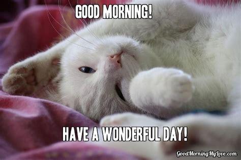 Good Morning Love Meme - 32 good morning memes for her him friends funny beautiful