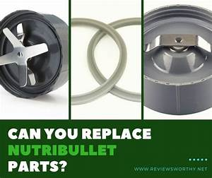 Can My Nutribullet U0026 39 S Parts Be Replaced