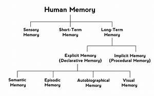 What Are Some Examples Of Explicit Memories
