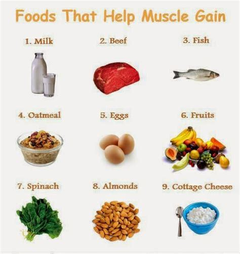 Muscle Building Foods To Build Muscle Fast  Quick Meal