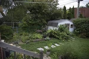 Tondre La Pelouse Sans Ramasser : alternatives la pelouse une pelouse cologique semis urbains ~ Melissatoandfro.com Idées de Décoration