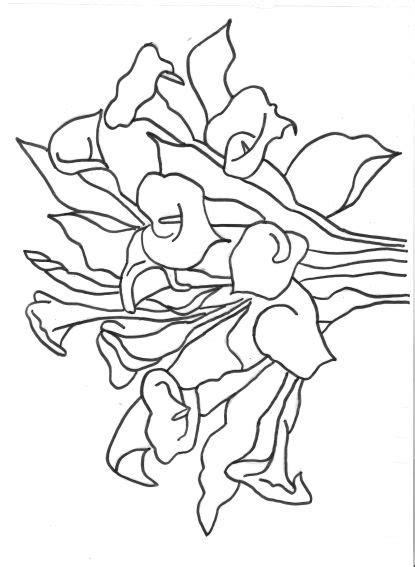 dibujos para colorear alcatraces imagui calas