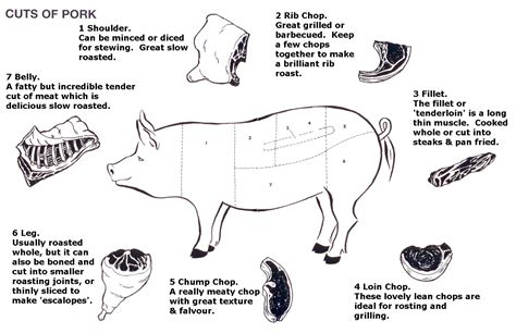 diagram of cuts of pork photo courtesy of http