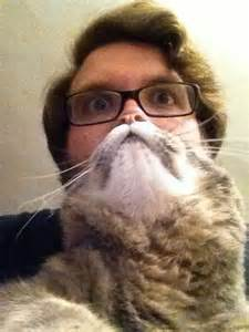 10 cat beards to tickle your whiskers