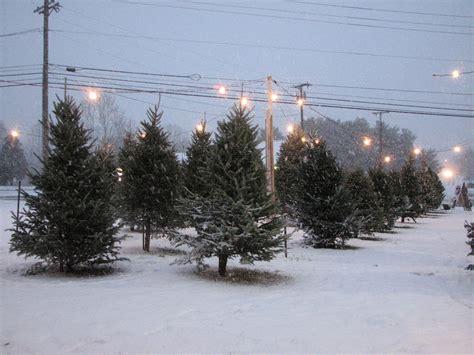 central viginia christmas tree lots canoemaine