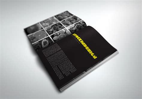 Free Indesign Portfolio Templates by Portfolio Book Presenter Stockindesign
