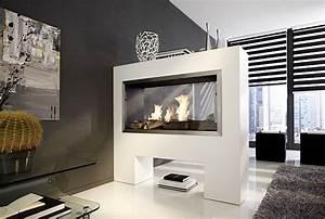 Fernseher Als Raumteiler : aspect tkg be bioethanolkamin als raumteiler ~ Sanjose-hotels-ca.com Haus und Dekorationen