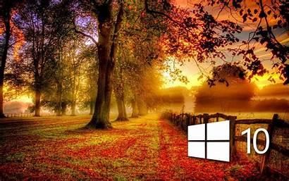 Windows Fall Autumn Wallpapers Desktop Backgrounds Simple