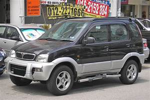 1x Rear Stainless Steel Roof Ladder For Daihatsu Terios