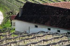 Freistehendes Spalier Bauen : zaunartige freistehende spalieren mit hagelschutzvorrichtungen im erwerbsobstbau ~ Somuchworld.com Haus und Dekorationen