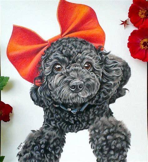 beautiful color pencil animal drawings  krystle