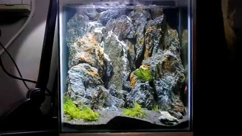 Mountain Aquascape by Mountains Aquascape