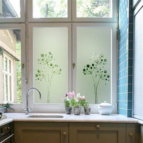 stickers vitres cuisine sticker occultant pour vitre et fenêtre pissenlit