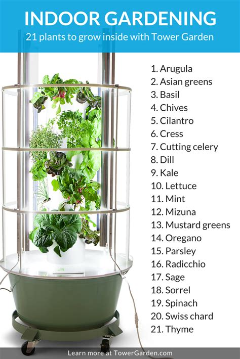 grow ls for indoor plants indoor gardening why winter is the new spring