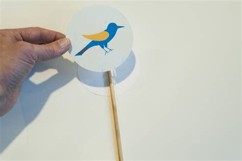 Thaumatrope Template Bird Cage by Best Photos Of Paper Bird On A Stick Template Shadow