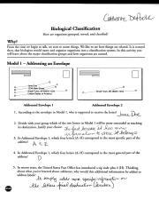 biological classification worksheet pdf chm we meow biological classication how are organisms