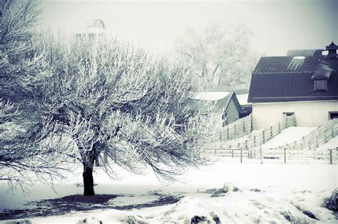 winter wonderland? Winter scenes Winter wonderland