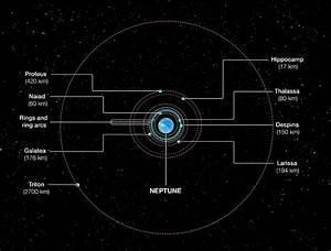 Orbits Of Neptune U2019s Inner Moons