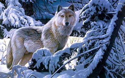 Anime Wolf Wolves Wallpapers Background Winter Cool
