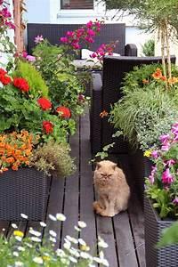 Zählt Terrasse Zur Wohnfläche : kleinen balkon gestalten ideen zur versch nerung ~ Lizthompson.info Haus und Dekorationen