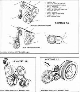 Diagrama De Motor 4 9 Cadillac