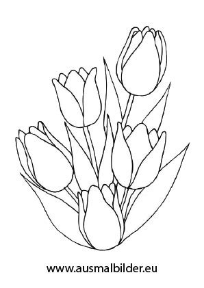 ausmalbilder tulpenstrauss blumen malvorlagen ausmalen