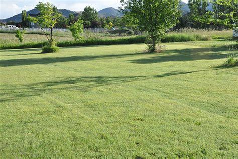 Lawn In The Low Water Landscape