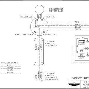 Walk Freezer Defrost Timer Wiring Diagram Free