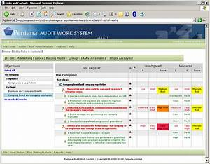 paws pentana audit work system With risk control self assessment template