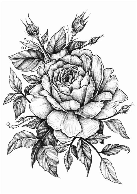rose on Behance | Tattoo Ideas | Pinterest | Behance, Rose and Tattoo