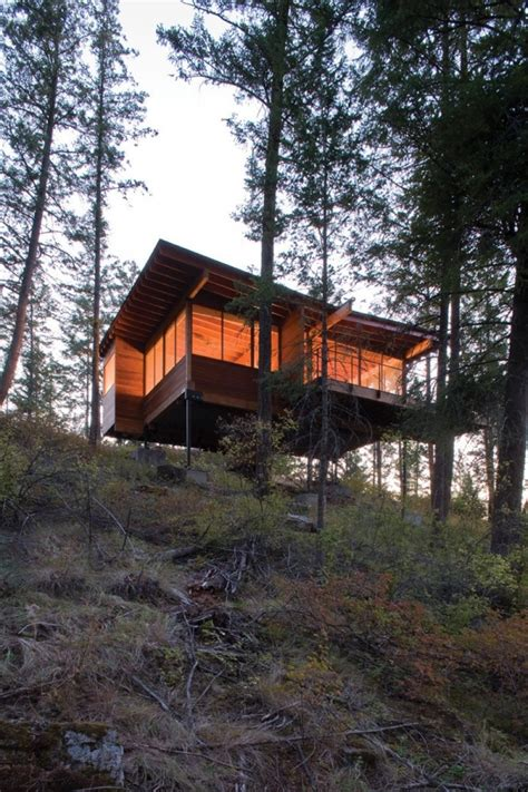 wooden forest cabin  montana adorable home