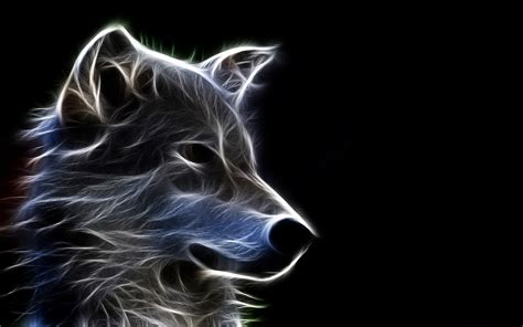 Cool Animal Wallpaper Light Wolf - wolf wallpapers best wallpapers