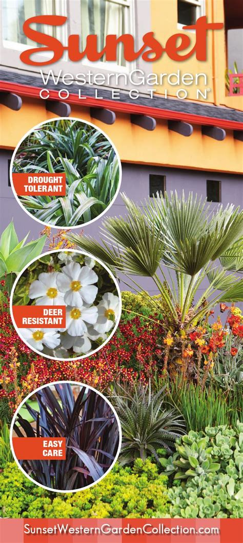 Sunset Western Garden Collection Brochure 201314 By