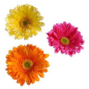 Buy Fresh Cut Flowers Picture