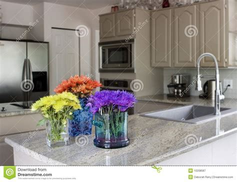 Modern Kitchen With Flowers On Counter Stock Image   Image