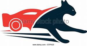 Pics For > Black And Red Panther Logo