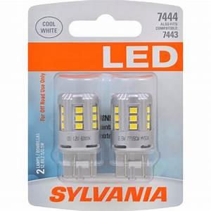 Zevo Led Light Mini Bulb Super Bright Led Lifetime Warranty Improved Style