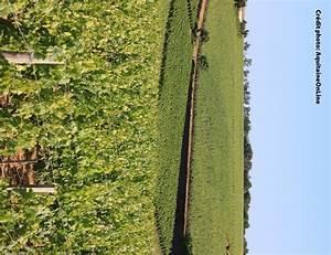 Cave A Vin 150 Bouteilles : cave vin jetfrost 130 bouteilles ~ Dailycaller-alerts.com Idées de Décoration