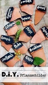 Kartoffel Aussaat Kalender : 19 best selber pflanzen images on pinterest decks gardening and backyard patio ~ Whattoseeinmadrid.com Haus und Dekorationen