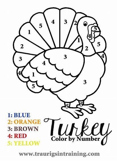 Thanksgiving Coloring Printable Number Turkey Pages