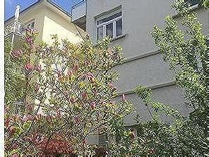 Haus Mit Garten Kaufen Stuttgart by H 228 User Kaufen In Stuttgart