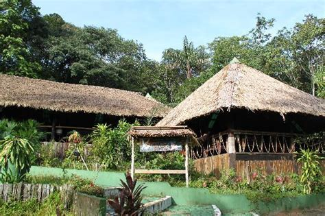 cuisine characteristics amazon jungle lodge tourplans