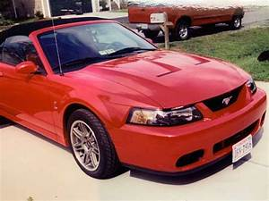 4th gen 2003 Ford Mustang 10th year anniversary SVT Terminator convertible [SOLD] - MustangCarPlace
