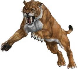 sabertooth cat saber toothed cat pokemo wiki