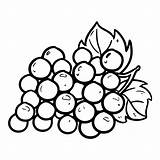 Coloring Pages Grapes Grape Printable Bunch sketch template