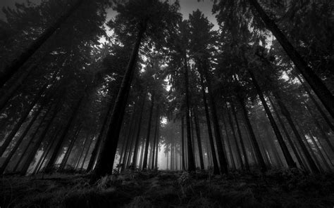 dark wood wallpapers images  cool wallpapers