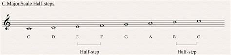 The notes of major and minor scales have specific names, called scale degrees. Major Scale - All About Music Theory.com