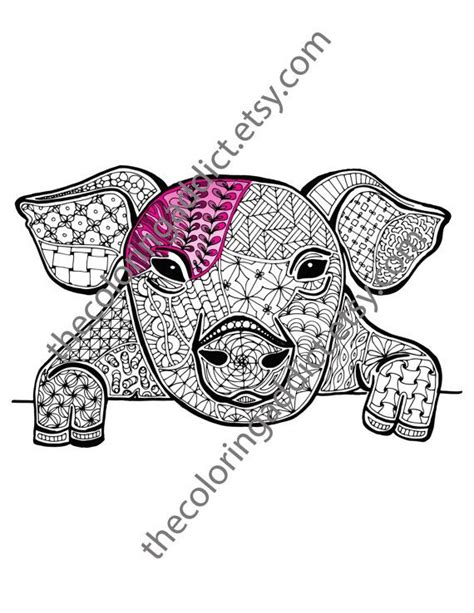 pig coloring sheet animal coloringby